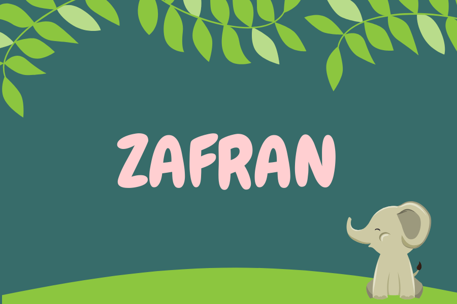 Maksud nama Zafran